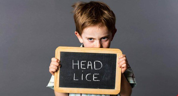 young boy holding chalkboard sign that reads head lice